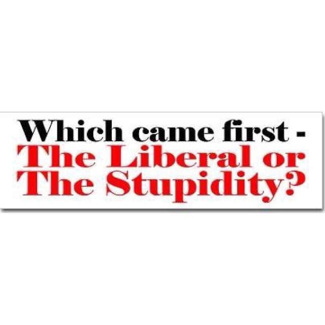 liberalstupidity