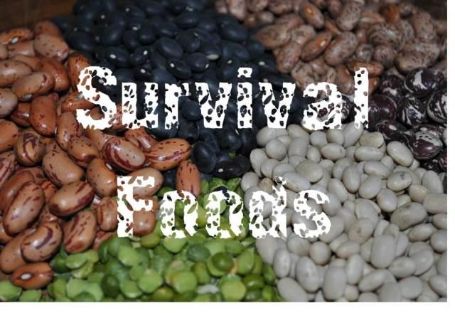 survival-foods