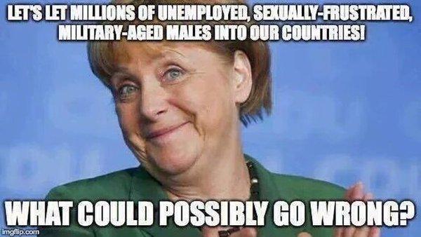 Merkel-idiot