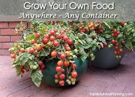 tomato pots